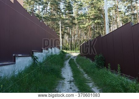 An Alley With Two Brown Metal Fences And A Passage With An Expensive Overgrown Green Grass