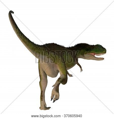 Rugops Dinosaur Tail 3d Illustration - Rugops Was A Predatory Feathered Theropod Dinosaur That Lived