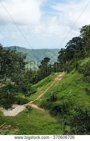 A Dirt Road Among The Jungle And Mountains. Rural Dirt Road In The Tropical Forest In Thailand.