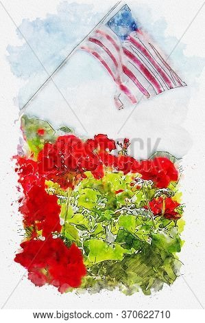 Red Geranium Flowers With American Flag In Background. Combination Of Sketch Drawing With Watercolor