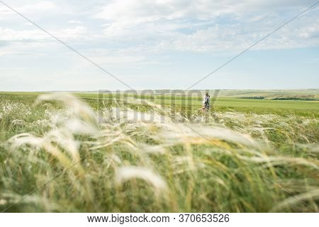 The Field Of The Waddle Bathed In The Rays Of The Setting Sun And A Couple In Love Walking On It