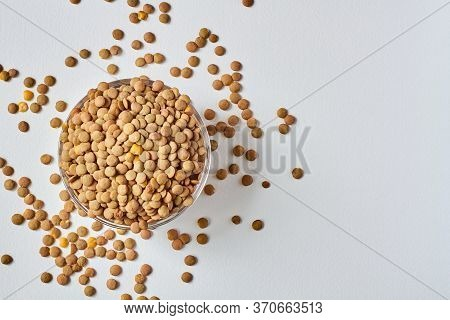 Raw Lentil Grains In A Transparent Glass Plate. Lentil Grains Scattered On A White Background. Close