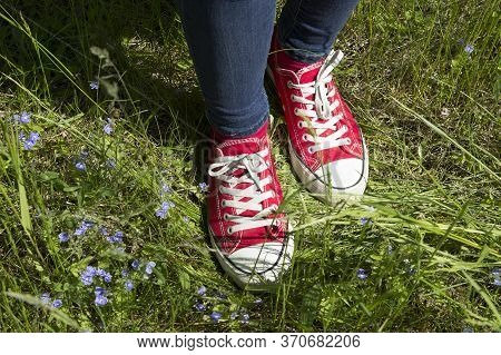 Red Athletic Girls Shoes Gumshoes, Legs Stand Among Summer Grasses And Forget-me-not Flowers In A Me