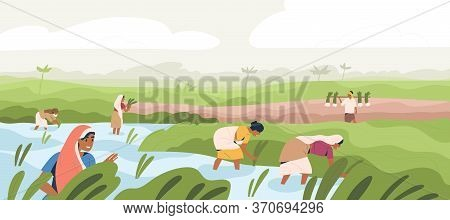Smiling Indian Farmers Working In Paddy Field Vector Flat Illustration. Man And Woman In Traditional