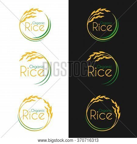 Organic Rice Logo With Circle Yellow Green Paddy Rice Vector Collection Vector Design