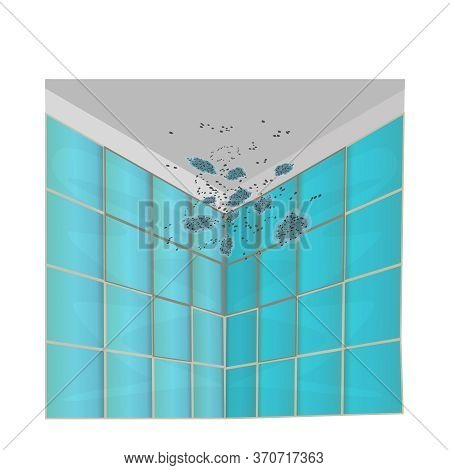 Mold On Walls And Ceiling Isolated On White Background. Mold On The Green Tile In The Bathroom. Mild