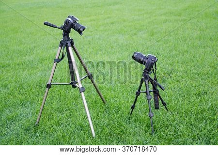 Two Black Slr Photo Cameras On Tripods Look Each Other In The Park On Green Grass Background