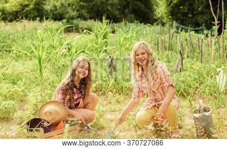 Girls Planting Plants. Garden And Beds. Rustic Children Working In Garden. Agriculture Concept. Grow