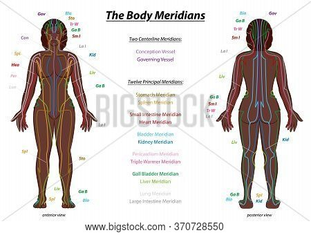 Meridian System Chart, Black Woman, Female Body With Labelled Meridians - Anterior And Posterior Vie