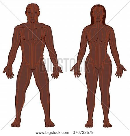 Meridian System Chart, Black Couple, Male And Female Body With Meridians, Traditional Chinese Medici