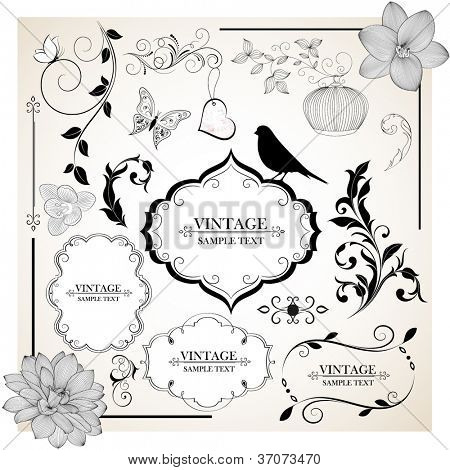 Set of  hand-drawing calligraphic floral design elements. Vector illustration.