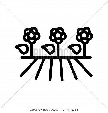 Flower Plantation Icon Vector. Flower Plantation Sign. Isolated Contour Symbol Illustration