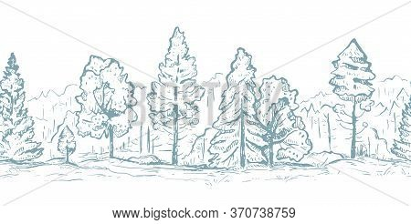Forest Hand Drawn Graphic Seamless Vector Sketch Pattern. Fir Trees And Deciduous Trees In Gray Colo