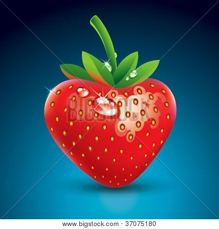 Fresh strawberry with drops on a blue background. Vector illustration.