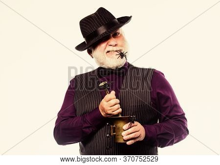 Weird Old Bartender With Gray Beard And Spider. Preparing Magic Drink. Halloween Concept. Strange Pe