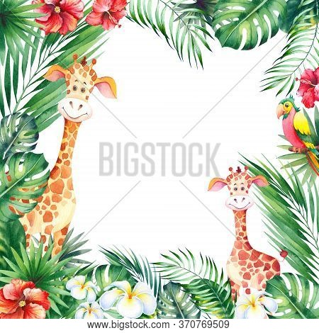 Square Frame With African Cartoon Animals. Cute Little Giraffe Cubs, Topical Leaves And Flowers. Wat