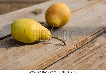 Yellow Pears On A Wooden Background Close-up. Sunny Rural Still Life. Ripe Juicy Pears. Top View Of