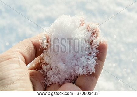 Holding Natural Soft White Snow In His Hand, Outdoors. Winter Day And Snow In The Hand. Sun Glare Is
