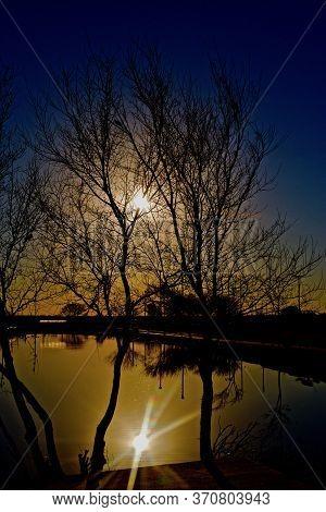 Rising Sunlight Silhouetting Shoreline Trees At South East City Park Public Fishing Lake, Canyon, Te