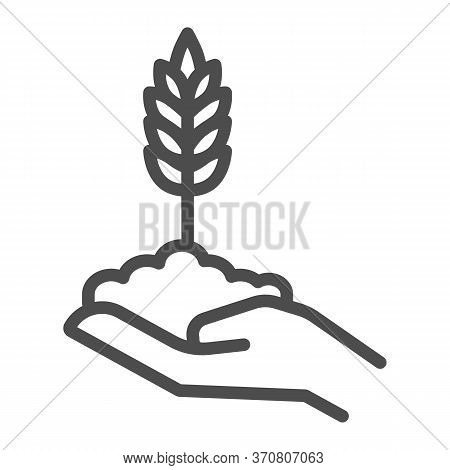 Wheat Spikelet On Human Hand Line Icon, Agriculture Concept, Grows In Caring Hand Sign On White Back