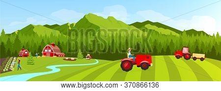 Farmland Flat Color Vector Illustration. Filed And Plantation Rural Landscape. Vegetables Cultivatio