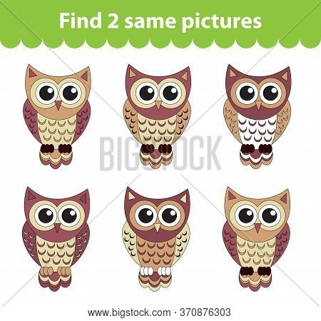 Childrens Educational Game. Find Two Same Pictures. Set Of Owl For The Game Find Two Same Pictures.
