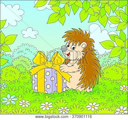 Joyful And Friendly Smiling Little Hedgehog Holding A Beautiful Box With A Holiday Gift On A Pretty