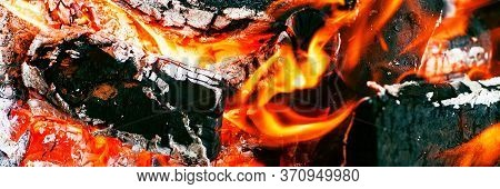 Bonfire. Orange Flame Of A Fire. Burning Birch Tree In The Fireplace. Bonfire On The Grill With Smok