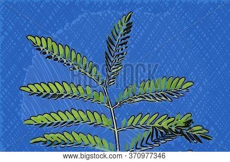 Art Color Of Green Leaf On Blue Color Background