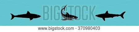 Shark Icon Isolated On Background , Sea, Shark, Shark Icon