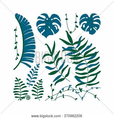 Isolated Jungle Leaves And Lianas. Template With Tropical Theme. Vector Illustration In Flat Style