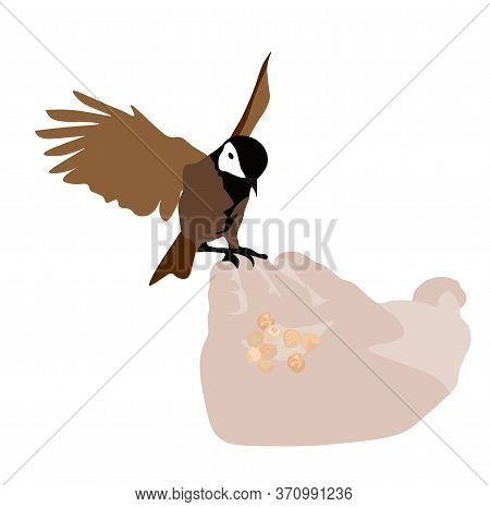 Vector Stock Illustration Of A Street Bird. Grey Sparrow Is A Small Bird. Feed The Finch With Your H