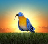 Bluebird standing in green grass, catching the worm as the sun rises behind him poster