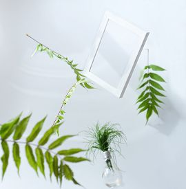 Beautiful Flying Green Leaves Background With White Frame. Creative Layout, Nature Concept. Leaves L