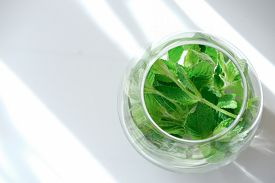 Mint Leaves In A Round Glass Vase. Top View With Copy Spase For Text. Fresh Greens For Gut Health. P