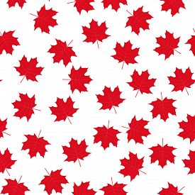 Red Maple Leaves On White Background Canadian Seamless Pattern. Canada Day Background. Vector Templa