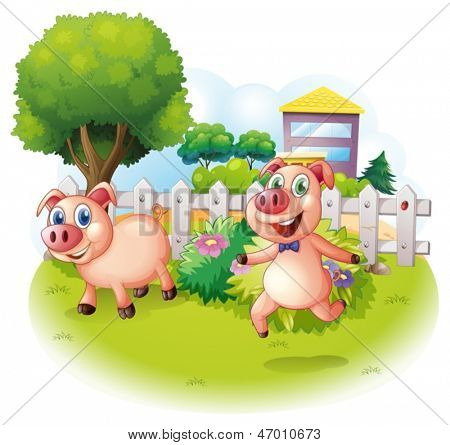 Illustration of the two playful pigs near the wooden fence on a white background