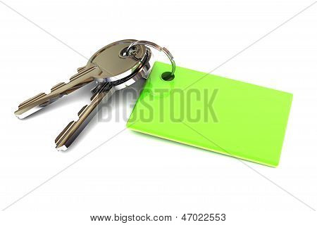 Keys With A Green Blank Keyring