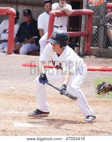 Binghamton Mets batter Daniel Munto