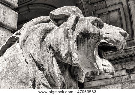 Lion Statue, Budapest