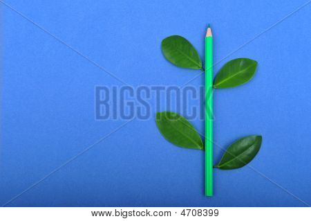Pencil With Leaf