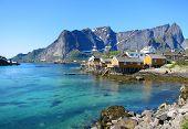 Arctic scenery of Lofoten Islands in Norway poster