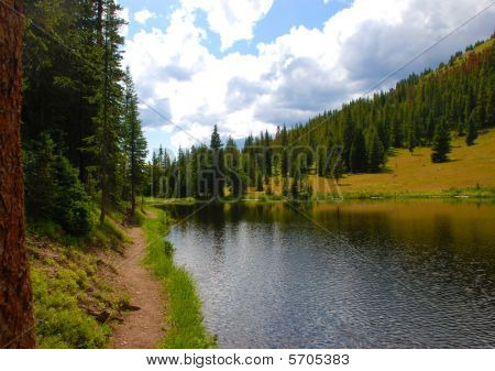 Path along the edge of Irene Lake in Rocky Mountain National Park in Colorado poster