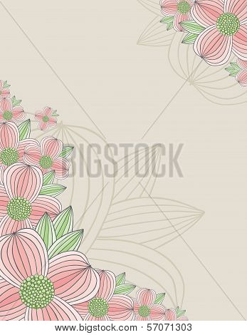 Dogwood Blossom Background