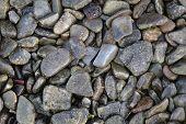 wet pebbles on beach using full frame poster