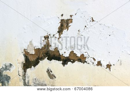 Exterior Wall With Peeling Paint Indicating Rising Damp