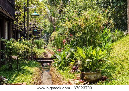 Green Garden With Small Channel