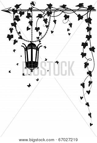 Ivy Border With Street  Lamp