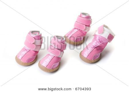 Pink dogs boots isolated on a white background poster