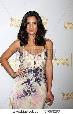 LOS ANGELES - JUN 19:  Camila Banus at the ATAS Daytime Emmy Nominees Reception at the London Hotel on June 19, 2014 in West Hollywood, CA